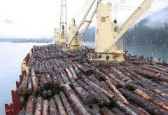 原木进口报关需要提供什么资料及如何办理手续